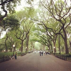 Central Park - Lookback
